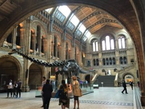 London kostenlos Natural History Museum bearbeitet klein