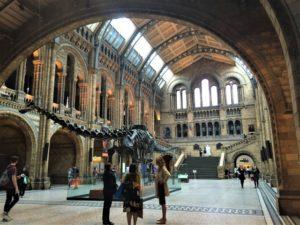 Natural History Museum London Aufmacher 1 bearbeitet klein