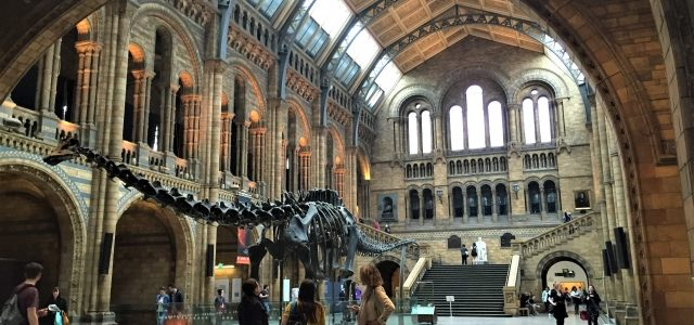 Natural History Museum London: Dinosaurier, Dramen und die liebe Zeit