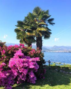 11 Gründe, warum ich den Lago Maggiore liebe Bild 3 bearbeitet klein