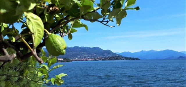 Dolce Vita: 111 Gründe, Italien zu lieben