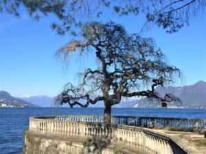 14 Dinge über den Lago Maggiore, die du noch nicht wusstest Aufmacher 2 bearbeitet klein