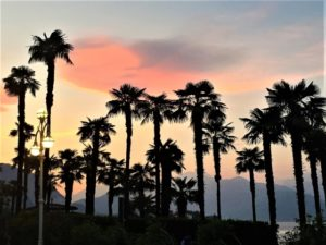 Entspannt Palmen Stresa bearbeitet klein