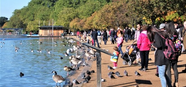 Hyde Park London: Entspannung pur mitten in der Großstadt
