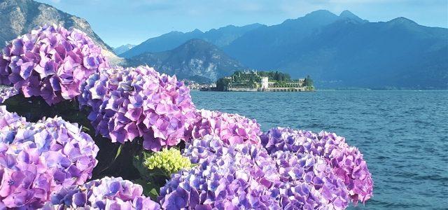10 Dinge, die du am Lago Maggiore vermeiden solltest