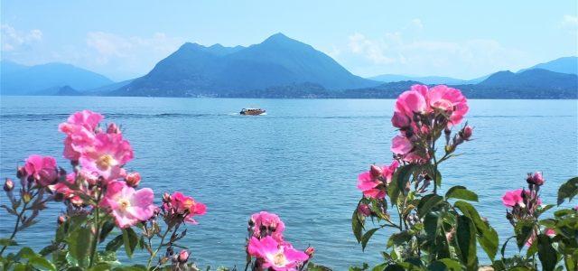 Lago Maggiore für Anfänger: 10 tolle Sehenswürdigkeiten rund um Stresa