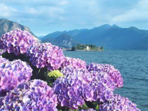 Die schönsten Orte am Lago Maggiore Aufmacher 2 bearbeitet klein