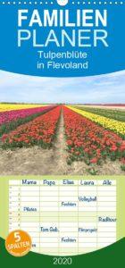 Tulpenblüte in Flevoland Familienkalender