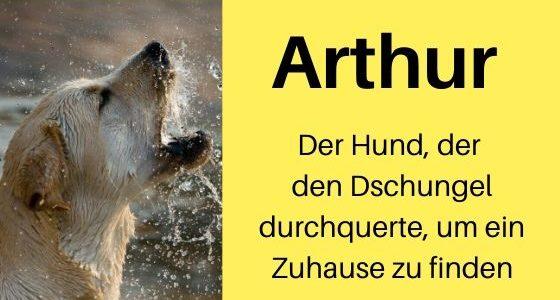 Rezension: Arthur von Mikael Lindnord