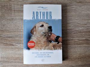 Rezension Arthur Aufmacher 2 bearbeitet klein