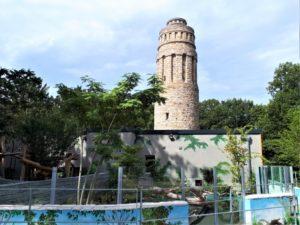 Tierpark Bochum Bild 7 bearbeitet klein