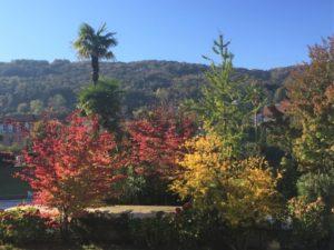 Lago Maggiore im Herbst Aufmacher 2 bearbeitet klein