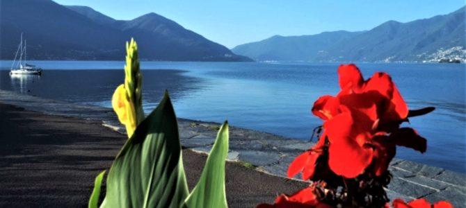 Geburtstag, Weihnachten und Co.: Geschenke für Lago-Maggiore-Fans