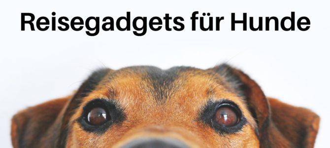 Reisegadgets für Hunde: Tolle Helfer für unterwegs