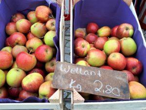 Markt in Travemünde Aufmacher 2 bearbeitet klein