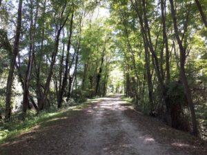 Naturschutzgebiet Fondotoce Bild 4 bearbeitet klein