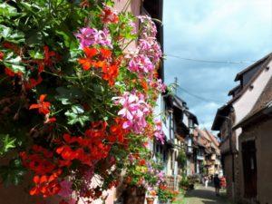 Eguisheim im Elsass Bild 4 bearbeitet klein