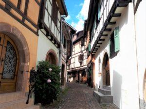 Eguisheim im Elsass Bild 7 bearbeitet klein NEU